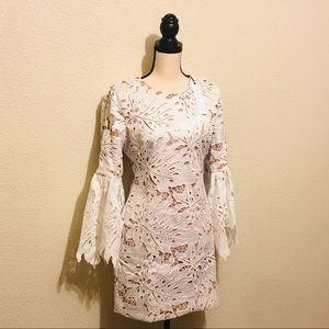 Dress the Population Dylan Crochet Shift Dress